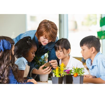 Lower Primary Science